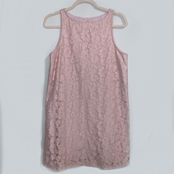 BB Dakota Dresses & Skirts - BB Dakota Pink Lace Dress